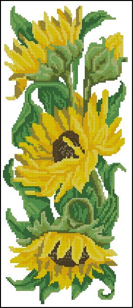 Подсолнухи - Цветы - Схемы