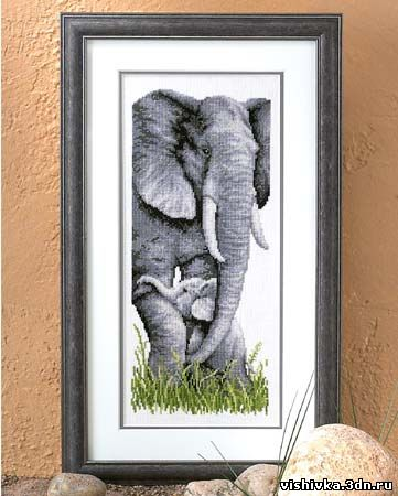 Слон и слоненок - Слоны