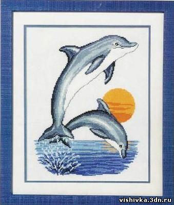 Дельфины на закате - Подводные