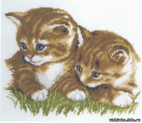 Кошки | Просмотров: 468