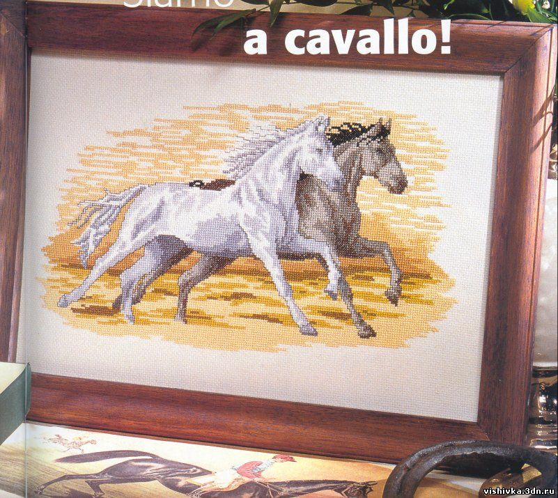 Лошадь белая и лошадь серая